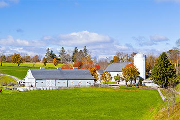 Kampa Gerbi Farm insurance